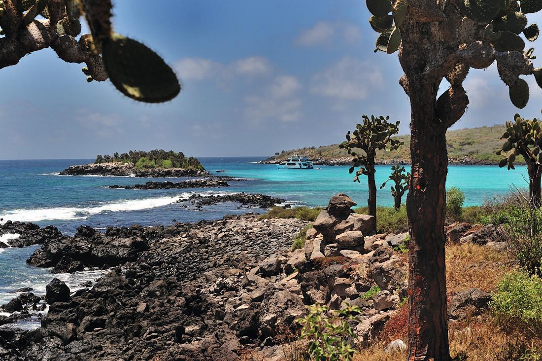 Pikaia_Lodge_Galapagos-10_copy_converted