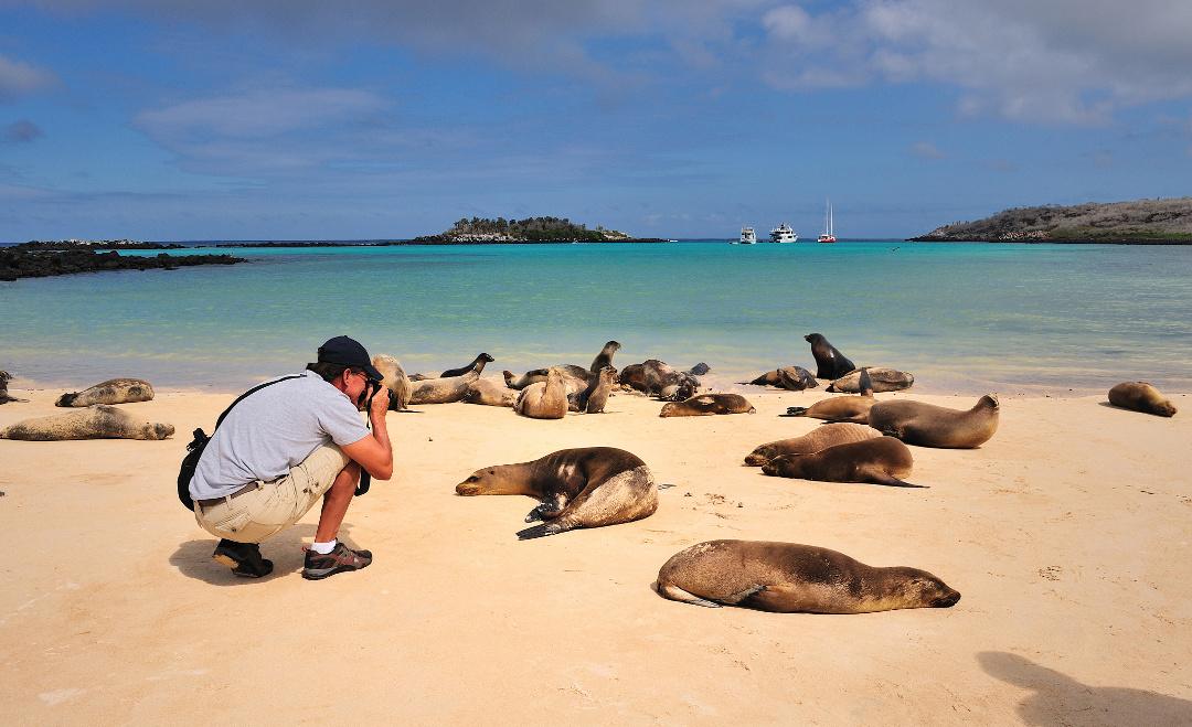 Pikaia_Lodge_Galapagos-20_converted