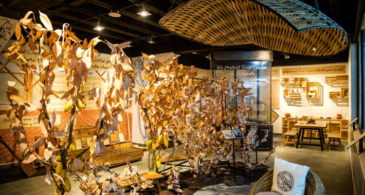 Museo del Cacao - Revista Clave!