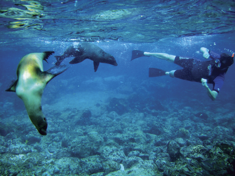 Galapagos crucero - Clave! Turismo