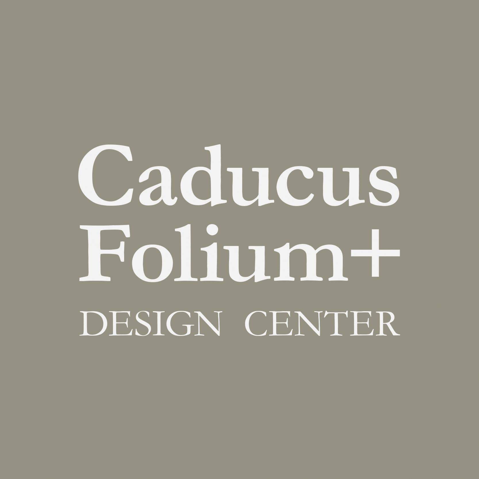 Caducus Folium- Especial Decoración - Revista CLAVE!