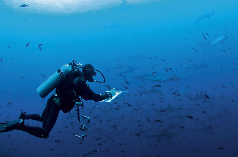 No plastic in Galapagos - Revista CLAVE Turismo Ecuador