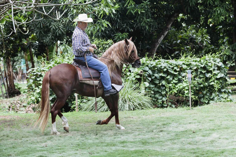 Hacienda Puerto Palenque - Revista CLAVE Turismo Ecuador