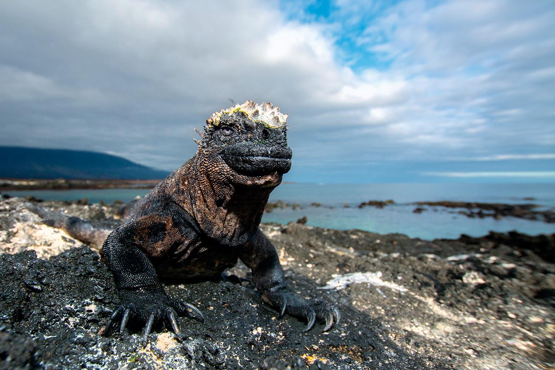 San Cristobal Galápagos - CLAVE Turismo